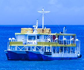 お出かけ企画~水中観光船&ランチ~